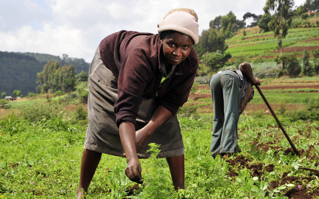 Farm workers facing illegal evictions are protected by the law